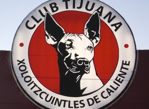 Xoloitzcuintles were hairless Aztec dogs. They are now the mascot of Tijuana's soccer club, and the inspiration for body art.