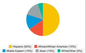 Ethnic Diversity Chart