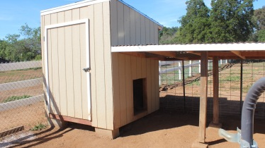 Volunteers donated supplies and built six habituates for pot-belly pigs at Penelope's Purpose, which includes a covered patio, a fenced in dirt space and a spot inside for pigs to sleep in. (Photo by Stephanie Wilson)